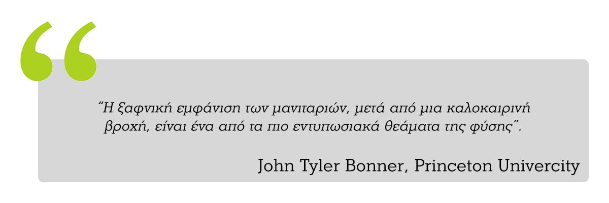 Ρητό του καθηγητή John Tyler Bonner για τα μανιτάρια
